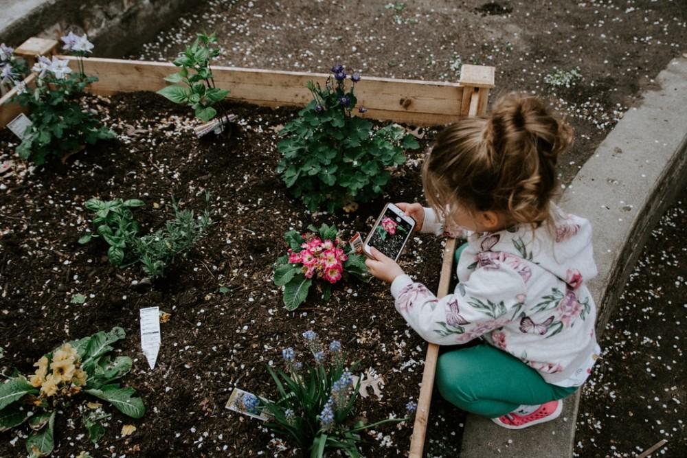 """Respublikinis gamtosauginis ikimokyklinio ugdymo įstaigų projektas-konkursas """"Mažieji sodeliai"""""""